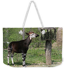 Okapi Weekender Tote Bag by Judy Whitton
