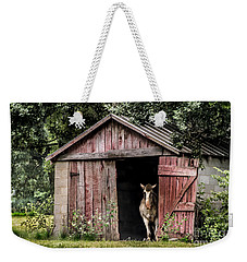 Old Gray Mare Weekender Tote Bag