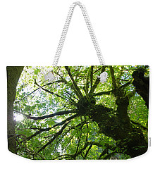 Old Growth Tree In Forest Weekender Tote Bag