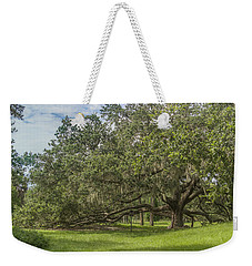 Weekender Tote Bag featuring the photograph Old Oak Tree by Jane Luxton