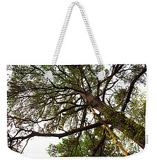 Weekender Tote Bag featuring the photograph Old Pine by Mez