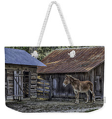 Old Red Mule Weekender Tote Bag by Lynn Palmer