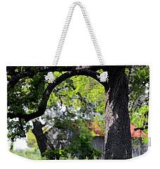 Old Texas Oak Tree Weekender Tote Bag by Connie Fox