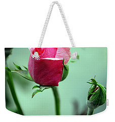Weekender Tote Bag featuring the photograph Oldest Sibling by Clayton Bruster