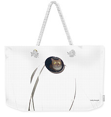 Weekender Tote Bag featuring the photograph Olga Cat Reflected In Drawer Knob by Kathy Barney