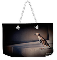Weekender Tote Bag featuring the photograph On Guard by Kristi Swift