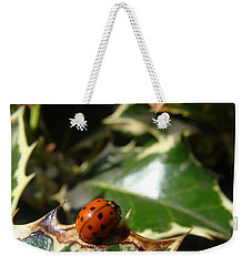 Weekender Tote Bag featuring the photograph On The Edge by Cheryl Hoyle