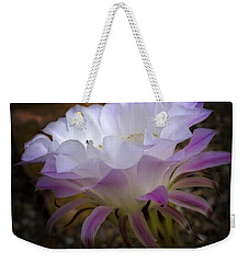 Weekender Tote Bag featuring the photograph On The Edge by Lucinda Walter
