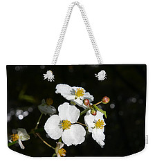 Weekender Tote Bag featuring the photograph On The Shore Line by Denyse Duhaime