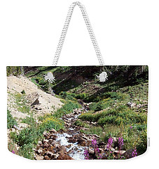 On Top Of The Continental Divide In The Rocky Mountains Weekender Tote Bag