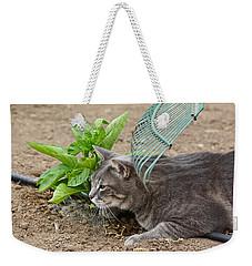 One Happy Cat Weekender Tote Bag