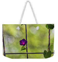 One Weekender Tote Bag by Tammy Espino