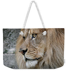 Weekender Tote Bag featuring the photograph Onyo #11 by Judy Whitton