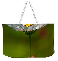 Weekender Tote Bag featuring the photograph Open For All by Byron Varvarigos