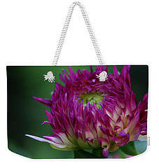 Opening Day Weekender Tote Bag by Denyse Duhaime