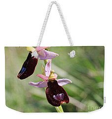 Ophrys Bertolonii Weekender Tote Bag by Antonio Scarpi