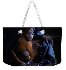 Orang Utan Youngster With Blanket Weekender Tote Bag by Peter v Quenter