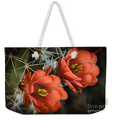 Orange Cactus Blooms Weekender Tote Bag