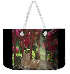 Weekender Tote Bag featuring the photograph Orange Cat In The Shade by Absinthe Art By Michelle LeAnn Scott