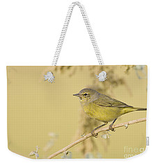 Orange Crowned Warbler Weekender Tote Bag by Bryan Keil