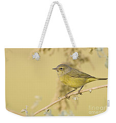 Orange Crowned Warbler Weekender Tote Bag