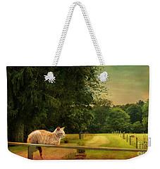 Orange Farm Cat Weekender Tote Bag