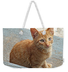 Orange Kitten 2 At The Front Porch Weekender Tote Bag