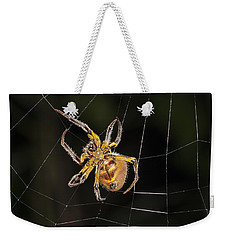 Orb-weaver Spider In Web Panguana Weekender Tote Bag by Konrad Wothe