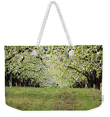 Weekender Tote Bag featuring the photograph Orchard by Patricia Babbitt