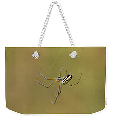 Orchard Spider Weekender Tote Bag by Greg Allore