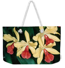Orchid 11 Weekender Tote Bag by Andy Shomock