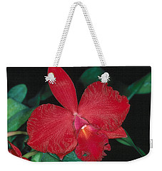 Orchid 12 Weekender Tote Bag by Andy Shomock