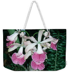 Orchid 17 Weekender Tote Bag by Andy Shomock