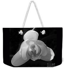 Weekender Tote Bag featuring the photograph Orchid #2 by PJ Boylan