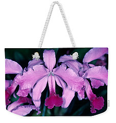 Orchid 6 Weekender Tote Bag by Andy Shomock