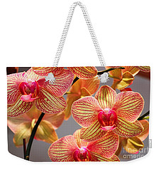 Weekender Tote Bag featuring the photograph Orchid by Judy Palkimas