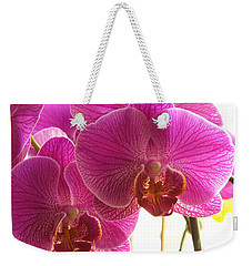 Weekender Tote Bag featuring the photograph Orchid by Lingfai Leung