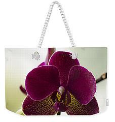 Orchid Weekender Tote Bag by Linsey Williams
