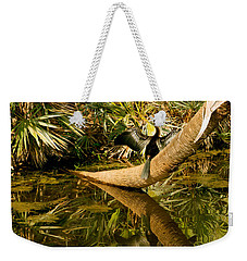Oriental Darter Anhinga Melanogaster Weekender Tote Bag by Panoramic Images