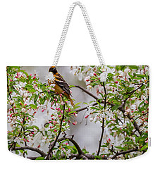 Oriole In Crabapple Tree Square Weekender Tote Bag by Bill Wakeley