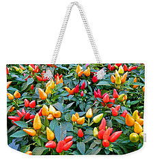 Ornamental Peppers Weekender Tote Bag