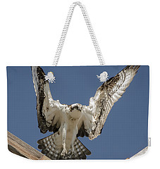 Weekender Tote Bag featuring the photograph Osprey Landing by Dale Powell