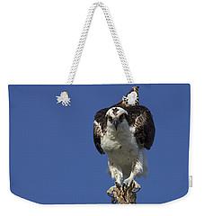 Osprey Photo Weekender Tote Bag
