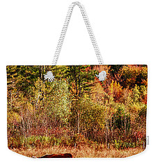 Cow Complaining About Much Weekender Tote Bag by Jeff Folger