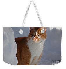 Weekender Tote Bag featuring the photograph Otis by Christiane Hellner-OBrien