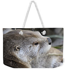 Otter And Family Weekender Tote Bag