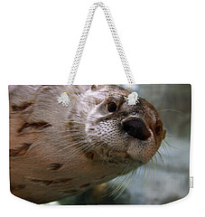 Otter Be Lookin' At You Kid Weekender Tote Bag