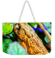 Our Backyard Visitor Weekender Tote Bag by Jon Woodhams