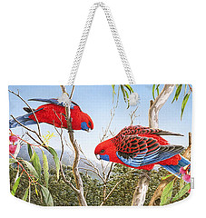 Our Beautiful Home - Crimson Rosellas Weekender Tote Bag