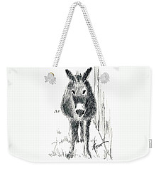 Our New Friend Weekender Tote Bag